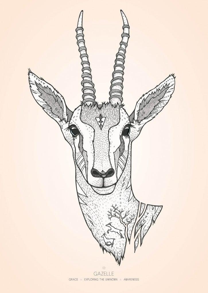 Gazelle farver